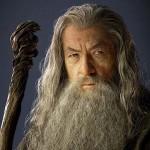 gandalf-full-beard-480